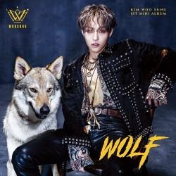 KIM WOO SUNG (金佑星) - WOLF