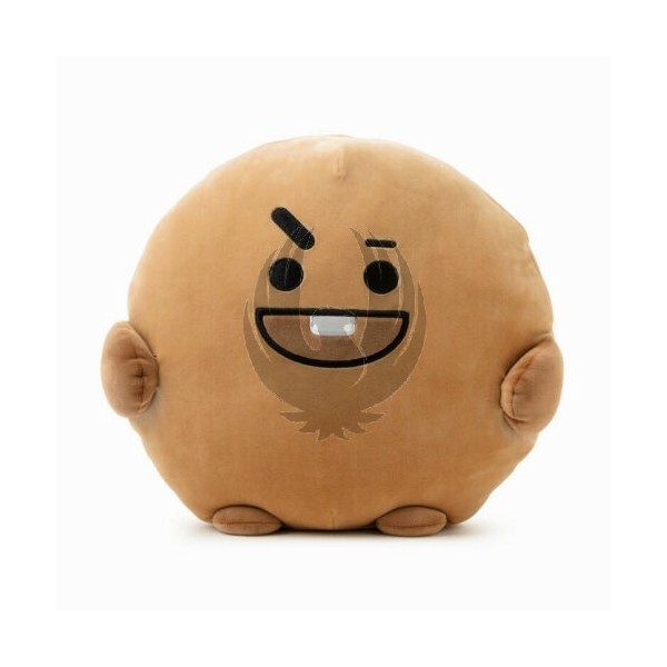 BT21 PongPong Plush Cushion Pillow [Chimmy]